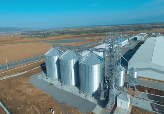 Chinese CAMC eyes to invest in creation of agro-industrial park in Azerbaijan