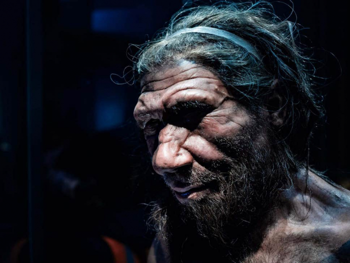 Common childhood illness may have killed off Neanderthals
