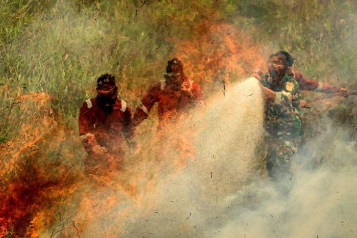 Los incendios forestales de Indonesia cubren de niebla tóxica el sureste asiático