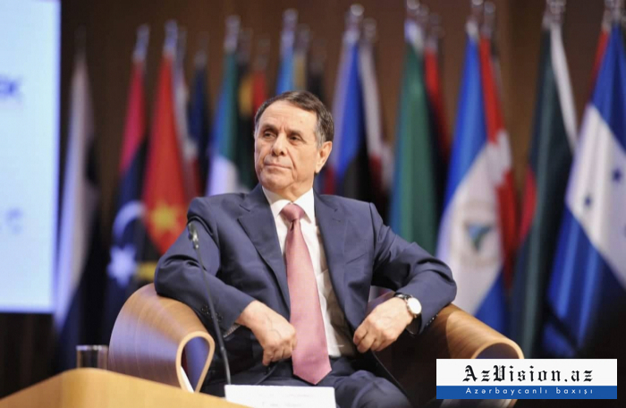 """Novruz Məmmədov: """"Bakıdan Tbilisiyə piyada yürüş etmişəm"""" - VİDEO"""