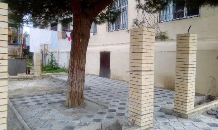 Nazirlik ağacın dibini betonlayanı cərimələdi