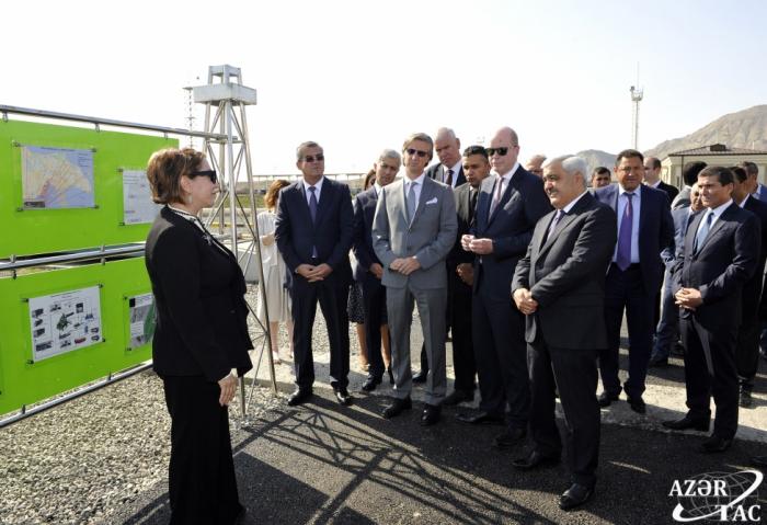 El PNUD, SOCAR y BP respaldan el proyecto de la plantación de árboles para luchar contra el cambio climático en Azerbaiyán