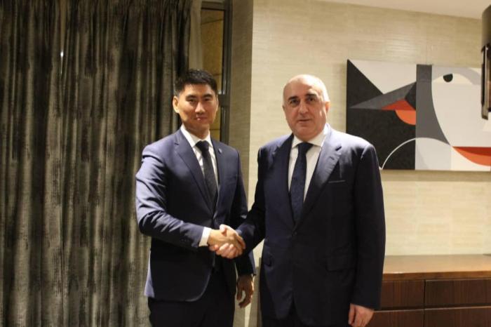 Elmar Mammadyarov meets with the Kyrgyz Foreign Minister Chingiz Aydarbekov
