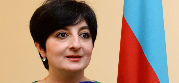 "Int'l campaign entitled ""Karabakh is Azerbaijan and that's that!"" to be launched"
