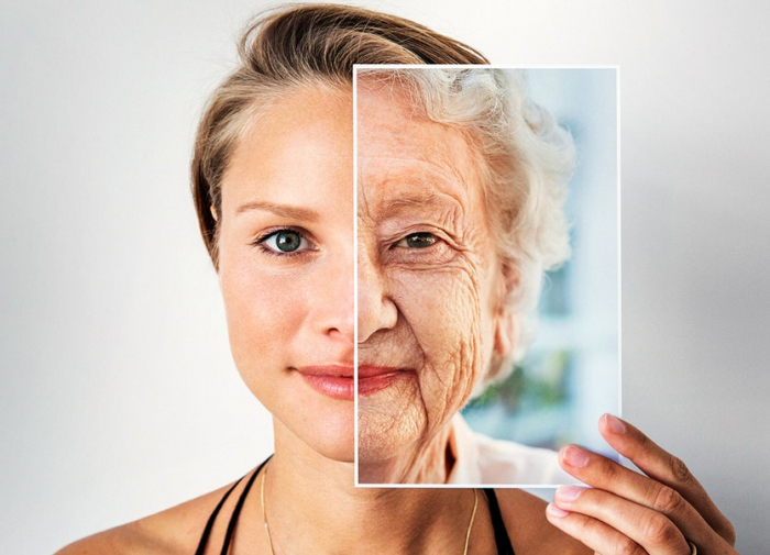 Why we age – new theories gaining ground-  iWONDER