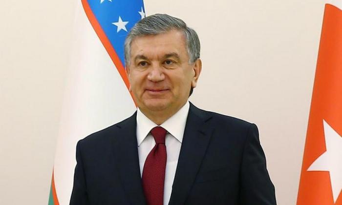Discutida la visita del presidente de Uzbekistán prevista a Azerbaiyán