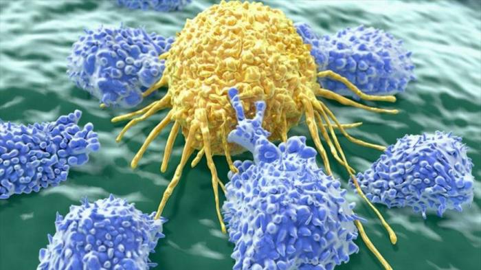 Prueban con éxito vacuna que puede acabar con células cancerígenas