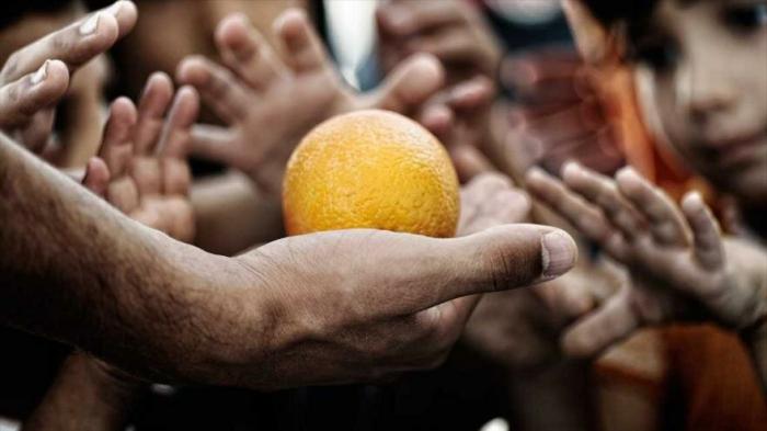 Informe:     Temperaturas altas generan niveles alarmantes de hambre