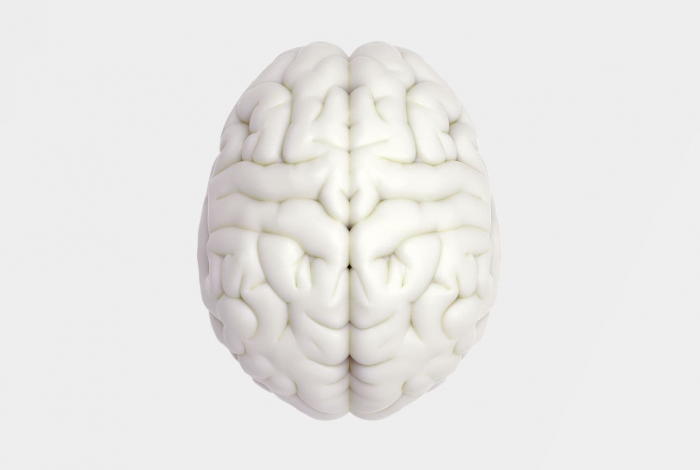 Excessive brain activity linked to a shorter life