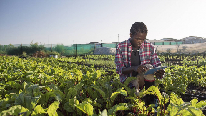 Climate Leadership from Developing Countries-  OPINION