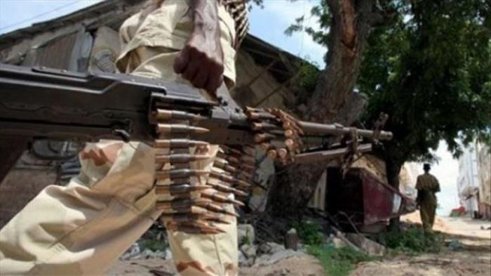 Over 20 al-Shabaab militants killed in central Somalia