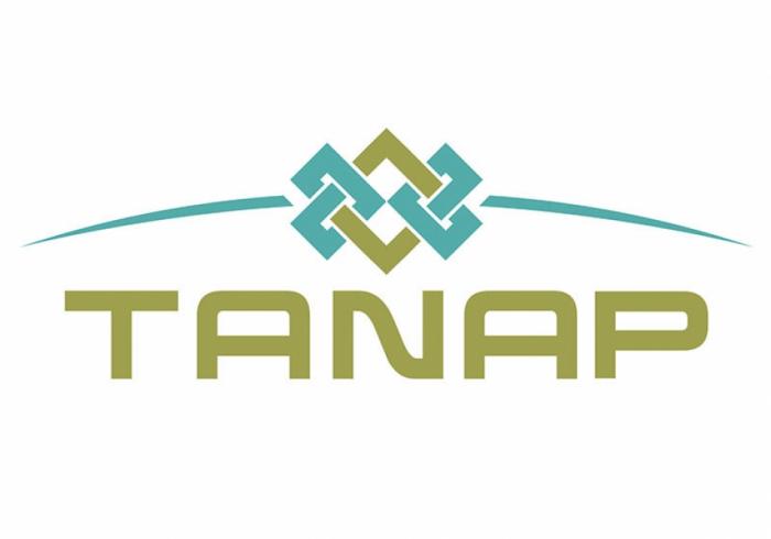 TANAP a reçu une récompense internationale