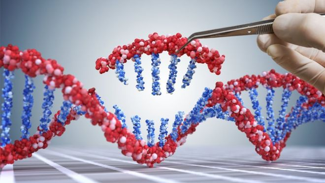 Prime editing: DNA tool could correct 89% of genetic defects
