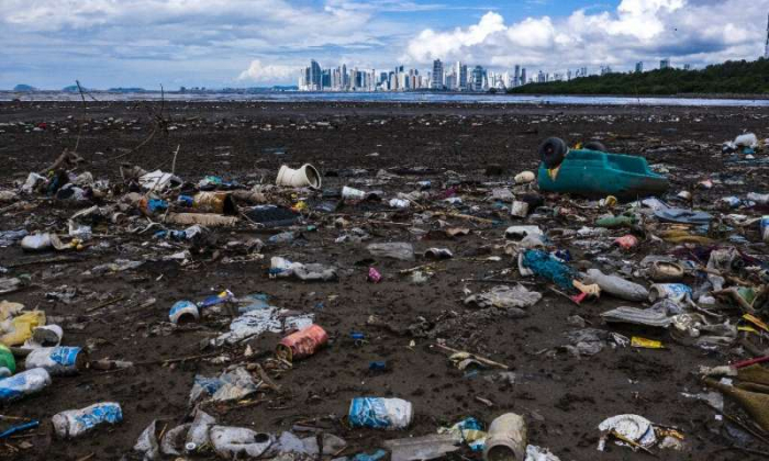 Big firm products top worst plastic litter list: report
