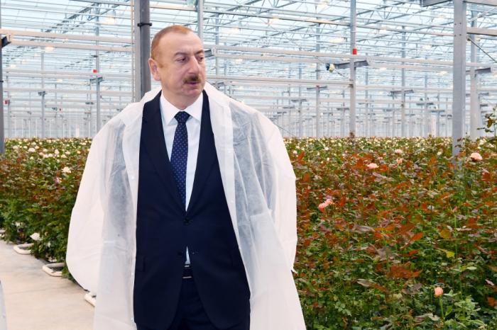 Prezident Qəbələdə gülçülük istixanası ilə tanış olub - FOTOLAR (Yenilənib)