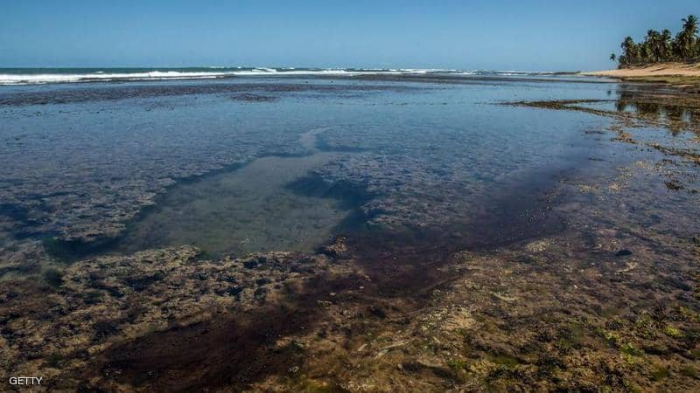 """تلوث أجمل شواطئ البرازيل.. و""""السبب مجهول"""""""