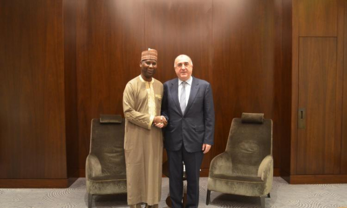 Azerbaijani FM meets President of the UN General Assembly