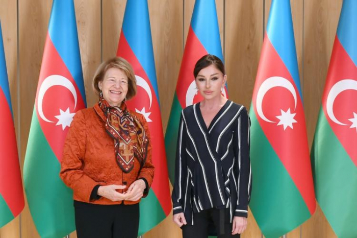 First Vice President of Azerbaijan meets with Baroness Emma Nicholson