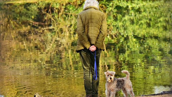 Científicos afirman que tener un perro reduce el riesgo de muerte ante ataques cardíacos y accidentes cerebrovasculares