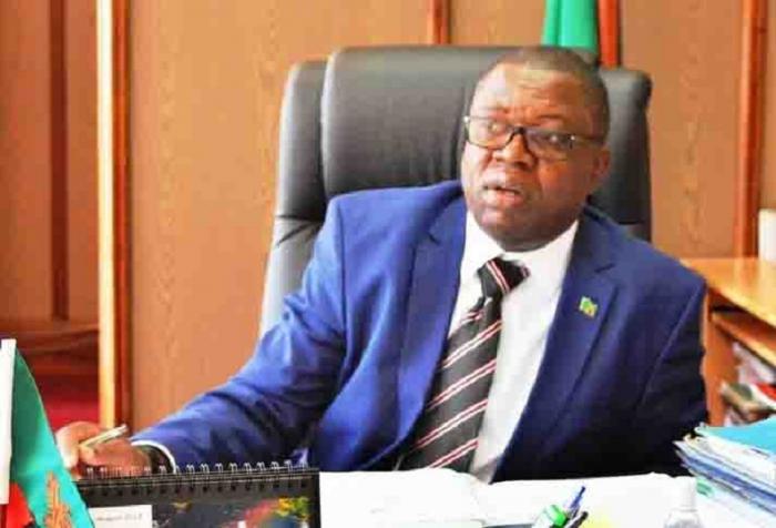 Le ministre zambien des affaires étrangères arrive à Bakou