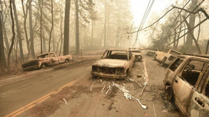 Stromabschaltung für 800.000 Haushalte wegen Waldbrandgefahr