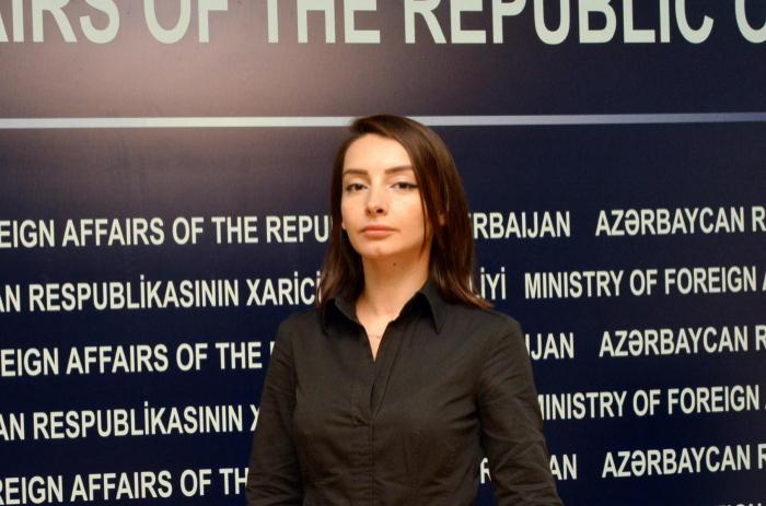 """""""Polis kübar və mədəni davranış nümayiş etdirib"""" - Avrokomissara cavab"""