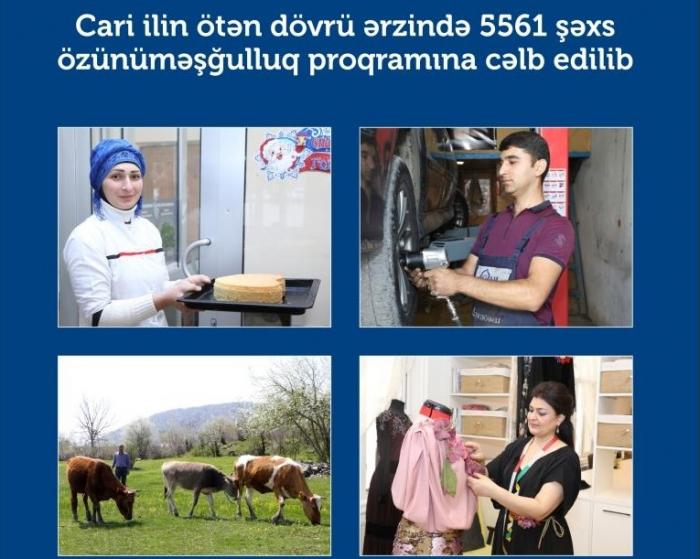 5561 nəfər özünüməşğulluq proqramına cəlb edilib