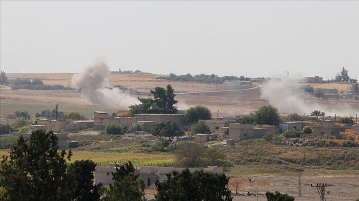 Suriyada 550 terrorçu zərərsizləşdirilib