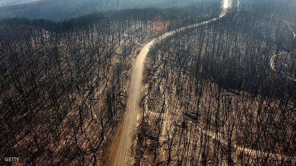 """طوارئ بالساحل الشرقي لأستراليا بسبب """"حرائق كارثية"""""""