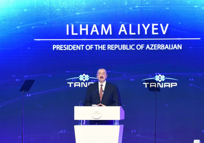 I am sure TANAP will be long-lasting project-Ilham Aliyev