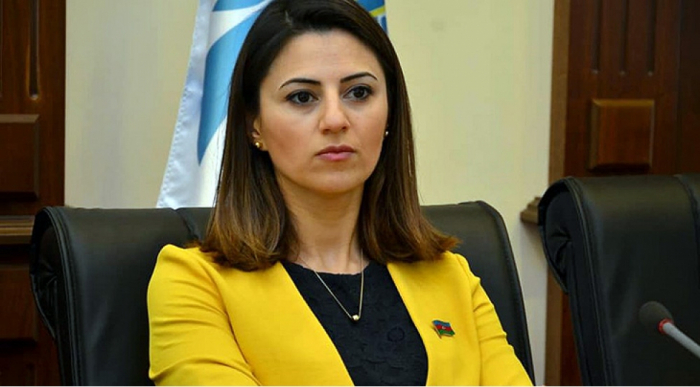 Primakov qalmaqalı - Deputat açıqlama verdi