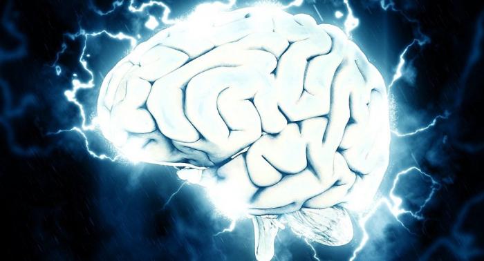 Los pacientes en estado de muerte cerebral pueden salvar otras vidas