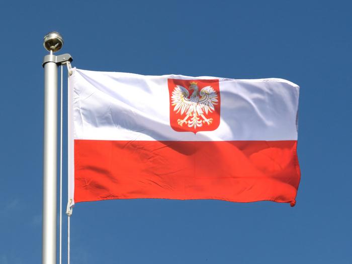 La Pologne expulse un néonazi suédois