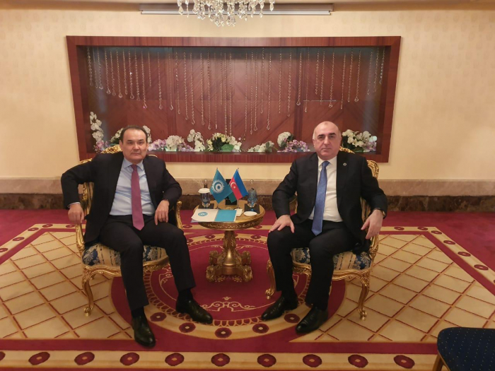 Elmar Mammadyarov rencontrele Secrétaire général du Conseil turc