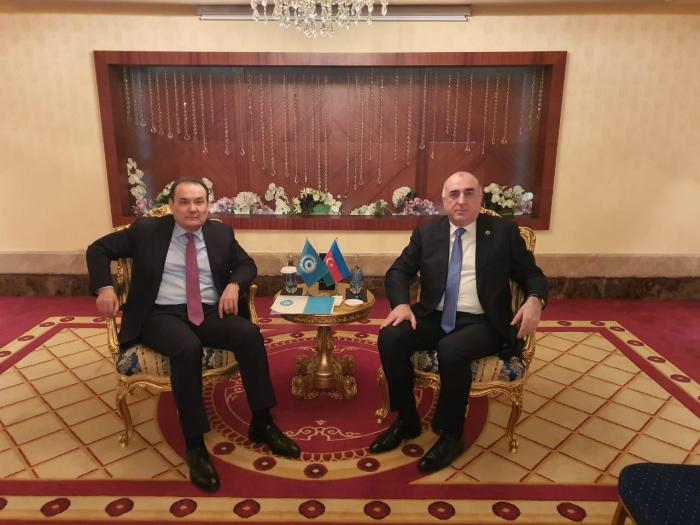 Elmar Mammadyarov se reúne con el Secretario General del Consejo Turco