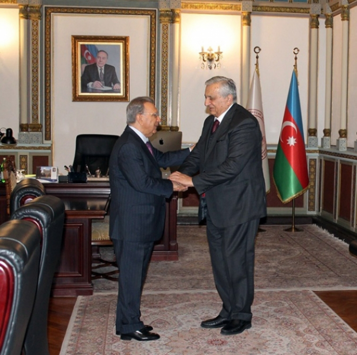 El académico Ramiz Mehdiyev se reunió con el vicepresidente de la Academia Nacional de Ciencias de Georgia