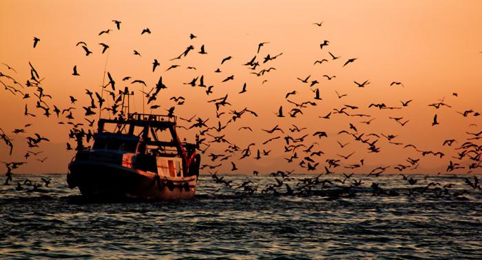 Un muerto y 11 desaparecidos por un incendio en un pesquero en Corea del Sur