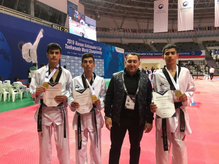 Azerbaijani taekwondo fighters win three bronze at 2019 Korean Ambassador's Cup