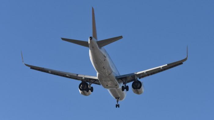Crash en Iran: Austrian Airlines annule un vol vers Téhéran