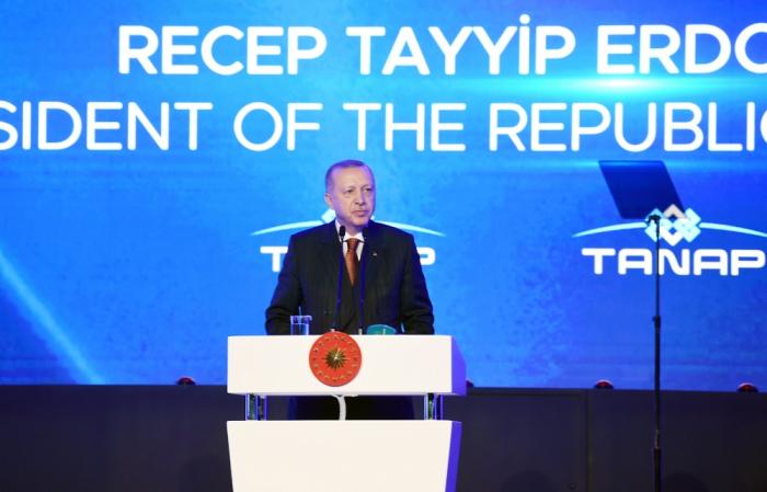 """""""TANAP Türkiyə və Azərbaycan arasındakı köklü dostluğun rəmzidir"""" - Ərdoğan"""