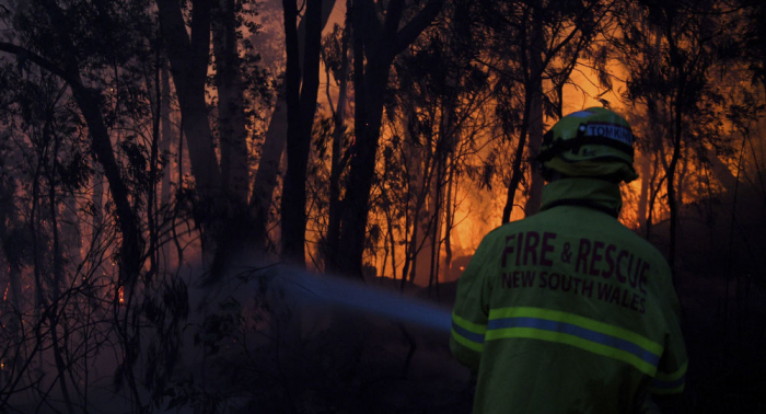 Australia's new South Wales declares state emergency over bushfires