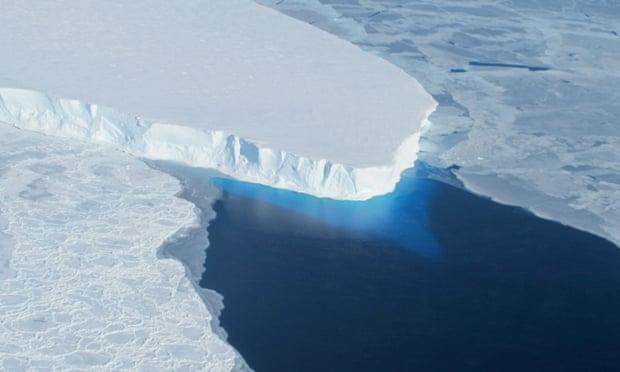 Climate emergency: world