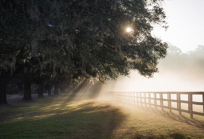 Sabaha duman, çiskin gözlənilir