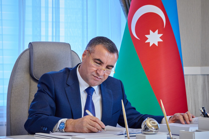New SOCAR vice president appointed