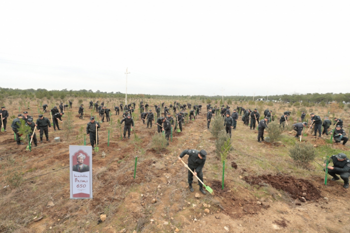 Polislər bir gündə 11 min 400 ağac əkib
