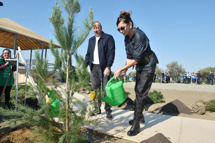 Presidente Ilham Aliyev y primera dama Mehriban Aliyeva asisten a la campaña de plantación de árboles en Shamají