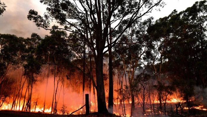 Incendies en Australie:  manifestation contre le réchauffement climatique