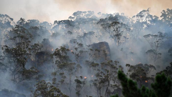 Toxic Sydney bushfire haze a