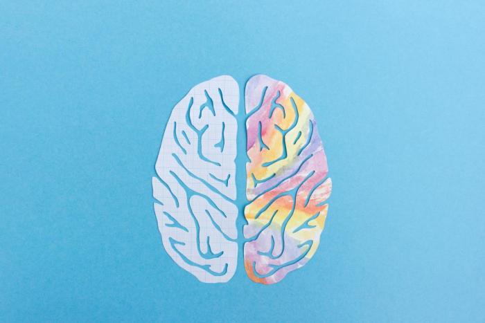 Left brain vs. right brain:   Fact and fiction