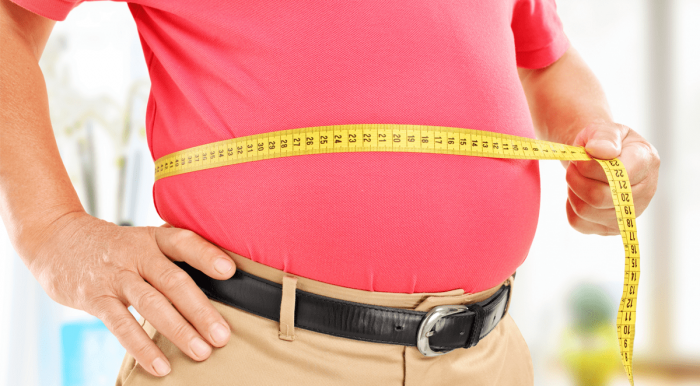 New study says obesity increases greenhouse gases